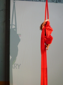 danza aerea Martina Nova