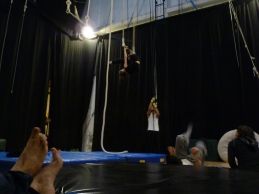 trapezio stage, La Fucina del Circo, Anibal Virgilio (7)