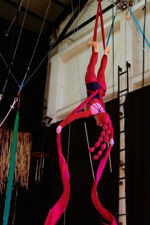 la polipa, fusion fest, la fucina del circo, tessuto, trapezio,corsi, torino (28) foto Fabio Gomena