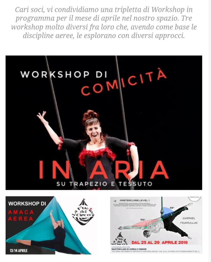 workshop, stage, circo, torino, trapezio, corda, amaca aerea, tessuto aereo, acrobatica, discipline aeree.png