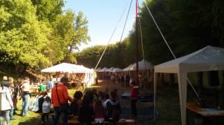 laboratorio circo, centri estivi, festival, feste di paese, animazione, tessuto, acrobatica, bimbi, familie